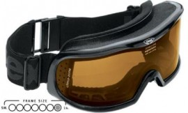 Uvex Vision Optic L Ski Goggles